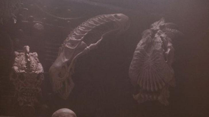 Alien references in Predator movies